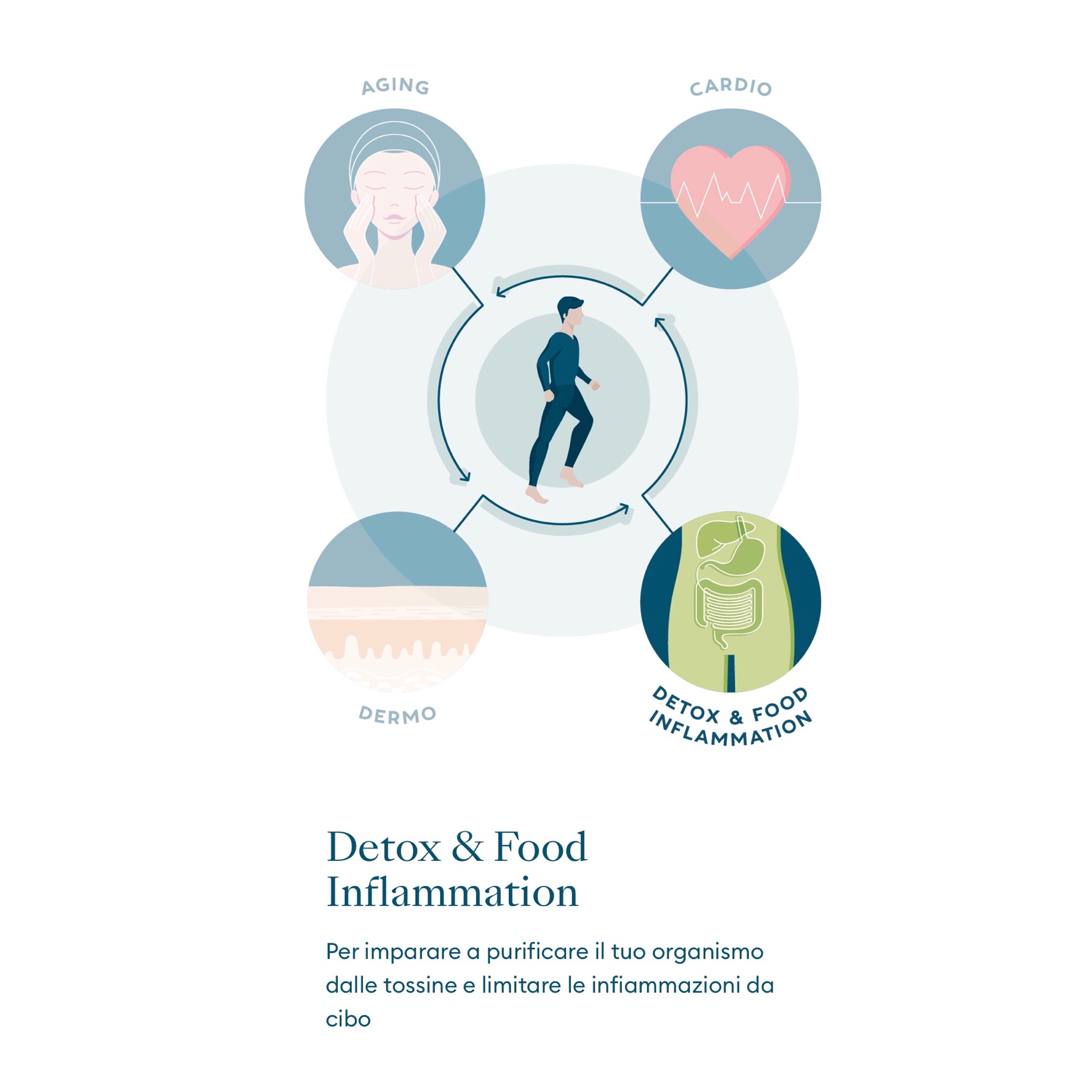 Detox&Food Inflamation